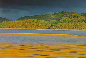 sands of the Mawddach - Dave Newbould